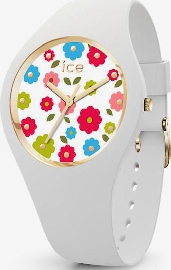 ICE WATCH ice-watch Quarzuhr »ICE flower, 017582« in weiß, Produktansicht
