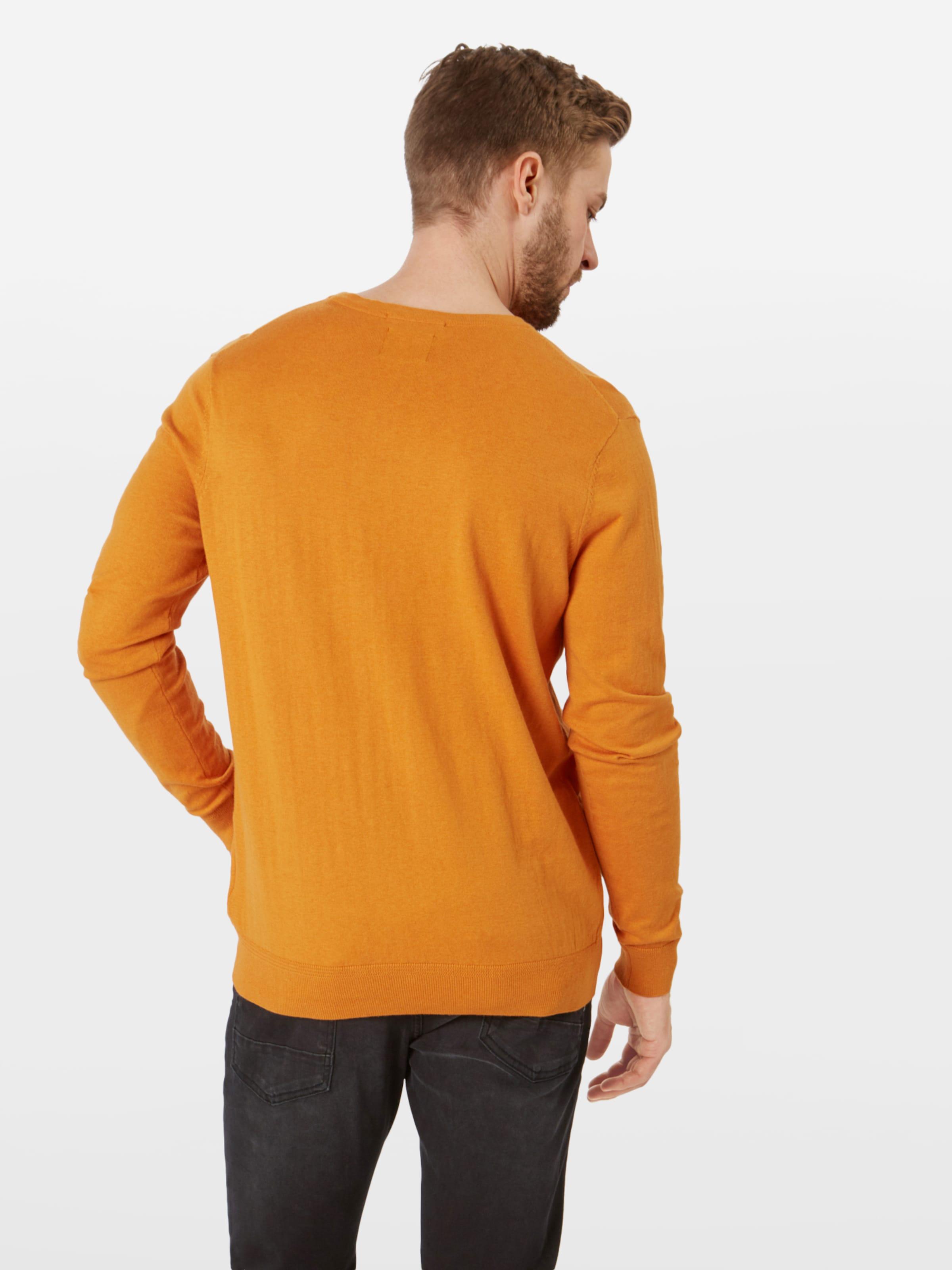 Pullover Scotchamp; Pullover Soda Soda In Scotchamp; In Orange Orange Scotchamp; tQshrCd
