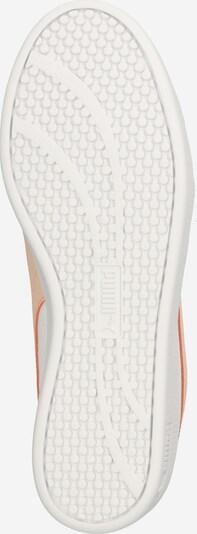 PUMA Sneaker 'Smash v2' in pfirsich / weiß: Ansicht von unten