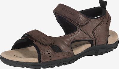 GEOX Hiking Sandals 'Strada' in Brown / Black, Item view