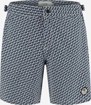 Pantalon Shiwi en bleu