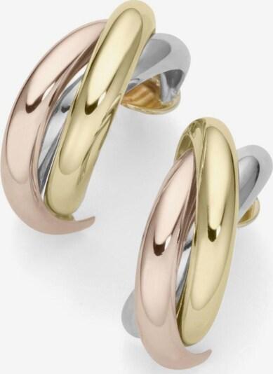 FIRETTI Paar Creolen in gold / rosegold / silber, Produktansicht