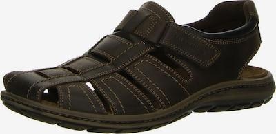 SALAMANDER Sandale in braun, Produktansicht