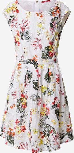 s.Oliver Kleid in mischfarben / weiß, Produktansicht