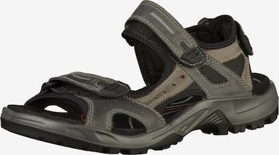 ECCO Sandały trekkingowe w kolorze ciemny beż / ciemnoszarym, Podgląd produktu
