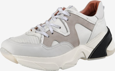 MJUS Sneakers in grau / greige / schwarz / weiß, Produktansicht