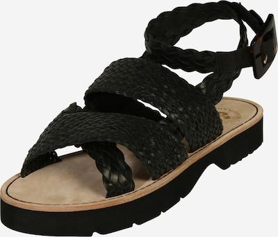 SCOTCH & SODA Sandały z rzemykami 'Phiona' w kolorze czarnym, Podgląd produktu