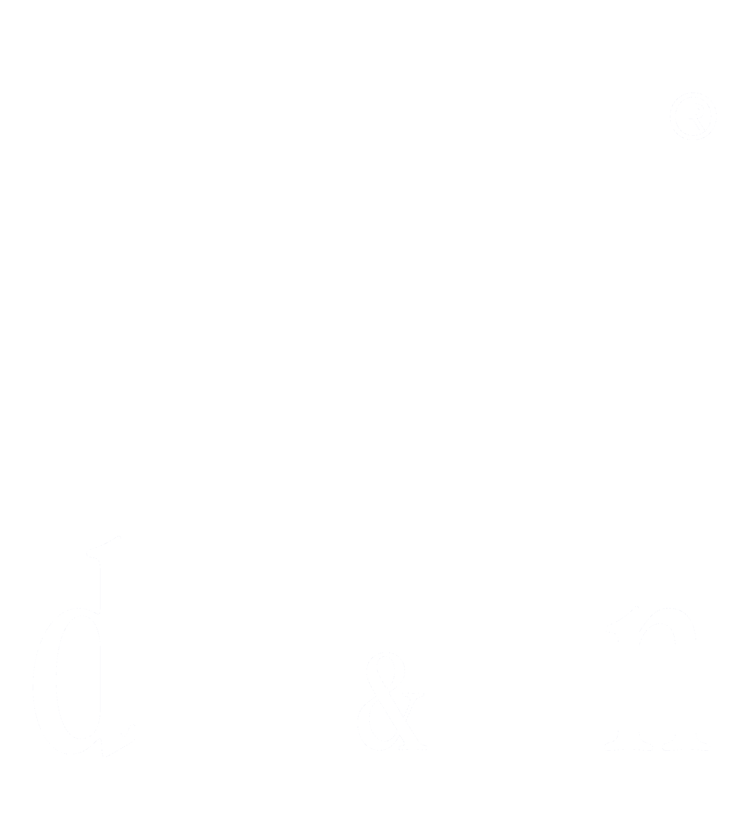 D&N Logo