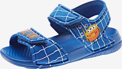 ADIDAS PERFORMANCE Sandale 'AltaSwim' in blau / neonorange / weiß: Frontalansicht