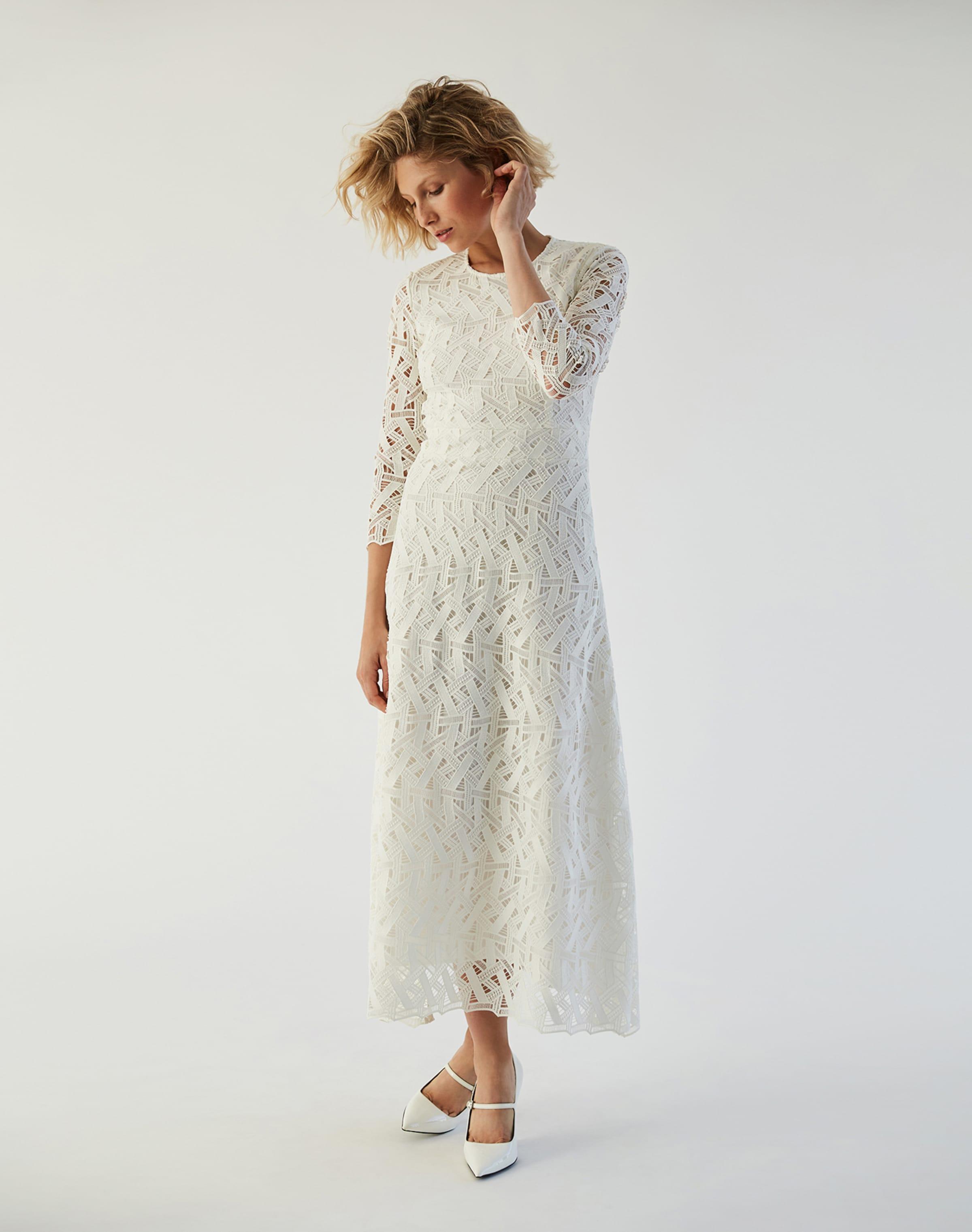 Ivyamp; Oak Weiß In Dress Oak Weiß Ivyamp; In Dress Ivyamp; xthQCrdBso