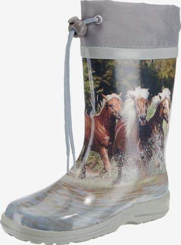 BECK Rubber Boots 'Pferde' in Grey
