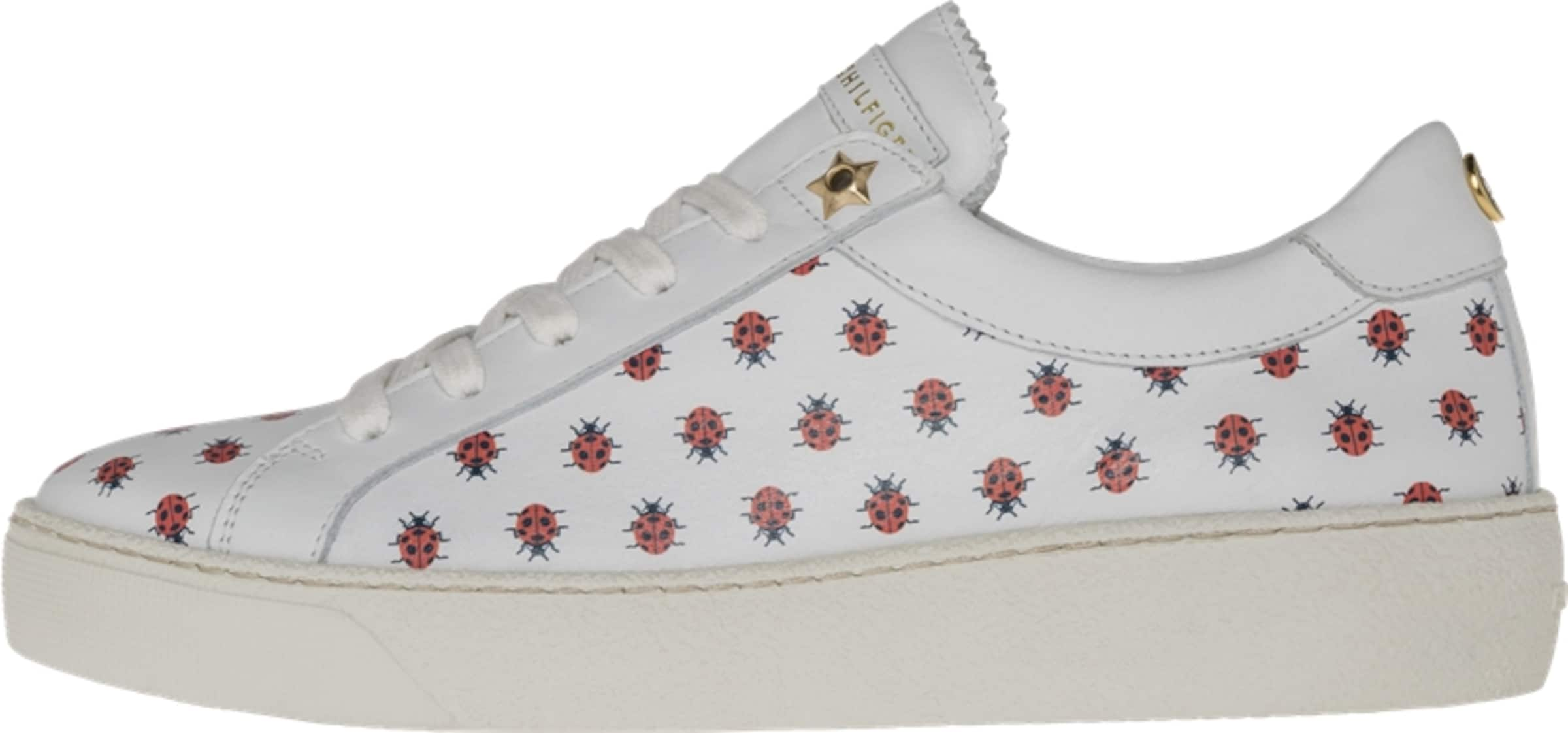 TOMMY HILFIGER Sneakers  LO LO  S1285UZIE 12A 64a25a