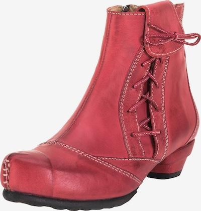 TIGGERS Klassische Stiefelette 'Lore' in rot, Produktansicht