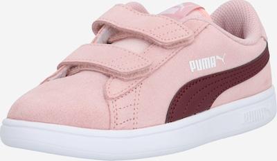 PUMA Sneaker 'Smash' in altrosa / burgunder / weiß: Frontalansicht