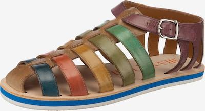MELVIN & HAMILTON Sandale in mischfarben, Produktansicht