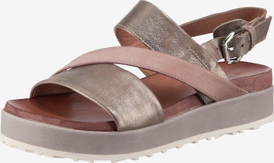JOLANA & FENENA Sandale in gold / pink, Produktansicht