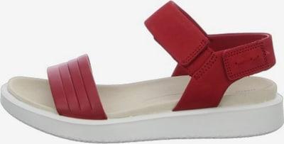 ECCO Sandalen/Sandaletten in rot, Produktansicht