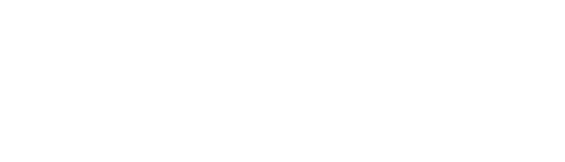 Blauer.USA Logo