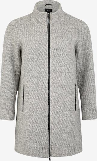 Rudeninis-žieminis paltas 'CASARA' iš Zizzi , spalva - šviesiai pilka, Prekių apžvalga