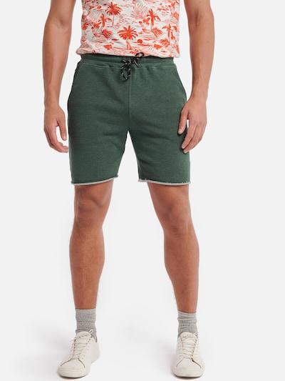 Shiwi Shorts in hellgrün: Frontalansicht