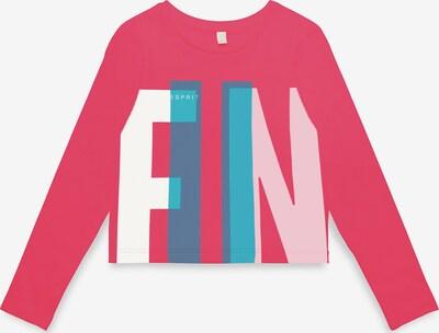 ESPRIT Shirt in blau / pink / rosa / weiß, Produktansicht