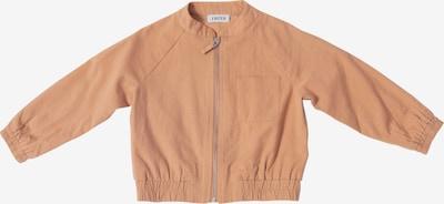 EDITED Prehodna jakna 'Zuko' | rjava barva, Prikaz izdelka