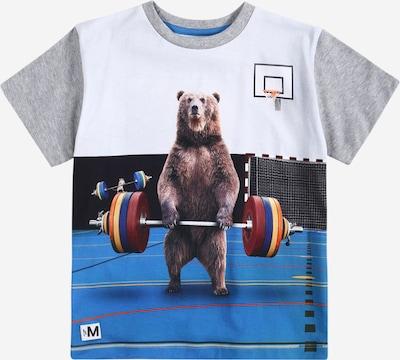 Tricou 'Rasmus' Molo pe gri / culori mixte / alb, Vizualizare produs