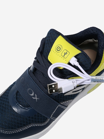 GEOX Sneaker in navy / neongrün: Rückansicht