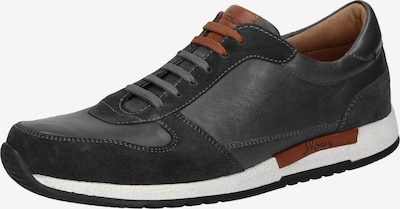SIOUX Sneaker 'Roel' in braun / graphit / weiß: Frontalansicht