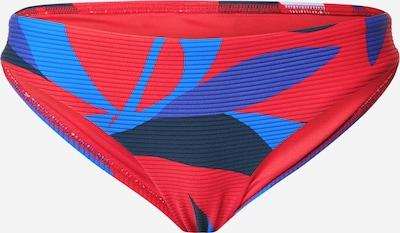 Seafolly Bikini hlačke 'Hipster' | modra / rjasto rdeča barva: Frontalni pogled