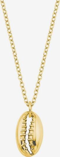 AMOR Kette  »Muschel, 2027416« in gold, Produktansicht