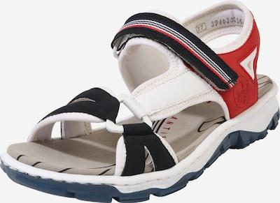 RIEKER Sandały trekkingowe w kolorze ciemny niebieski / czerwony / białym, Podgląd produktu