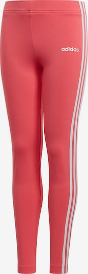 ADIDAS PERFORMANCE Leggings 'YG E 3S' in pink, Produktansicht