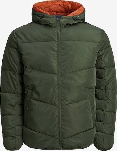 Produkt Winterjas in de kleur Grasgroen, Productweergave