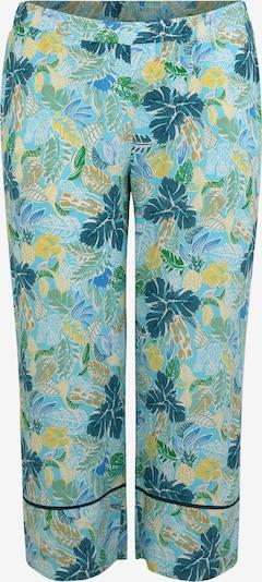 TRIANGLE Pantalon en aqua / mélange de couleurs, Vue avec produit