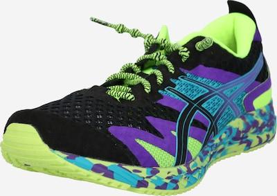 ASICS Sportschoen 'NOOSA TRI' in de kleur Turquoise / Neongeel / Donkerlila / Zwart, Productweergave