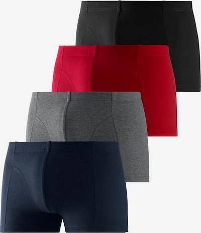 BENCH Bokseršorti tumši zils / pelēks / sarkans / melns, Preces skats