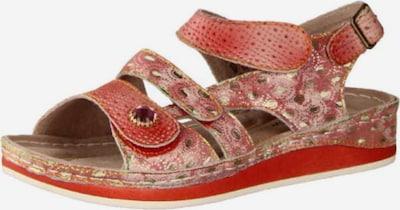 Laura Vita Sandalen in mischfarben / rot, Produktansicht