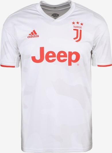 ADIDAS PERFORMANCE Fußballtrikot 'Juventus Turin 19/20 Auswärts' in hellgrau / orangerot / weiß, Produktansicht
