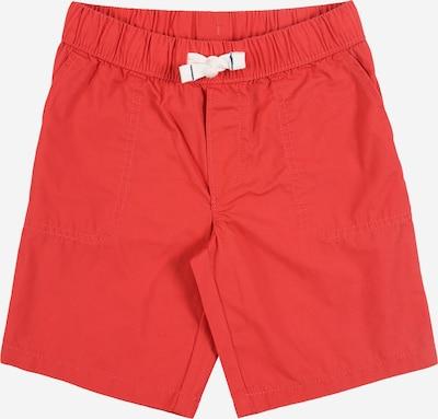 Carter's Pantalon 'S20 red op wov short' en rouge, Vue avec produit