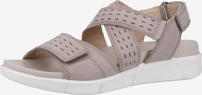 Legero Sandalen met riem in de kleur Taupe, Productweergave