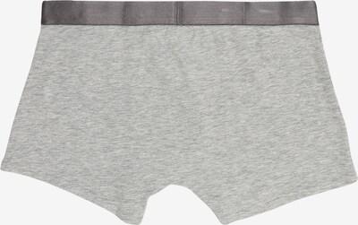 Apatinės kelnaitės iš Calvin Klein , spalva - pilka / juoda: Vaizdas iš galinės pusės