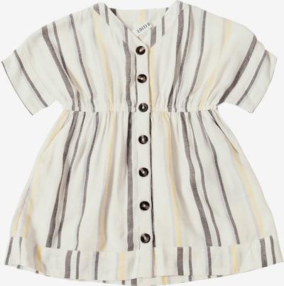 Suknelė 'Suki' iš EDITED , spalva - purpurinė / juoda / balta, Prekių apžvalga