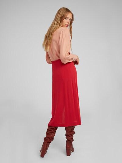 Palaidinė 'Babette' iš EDITED , spalva - rožinė: Vaizdas iš galinės pusės