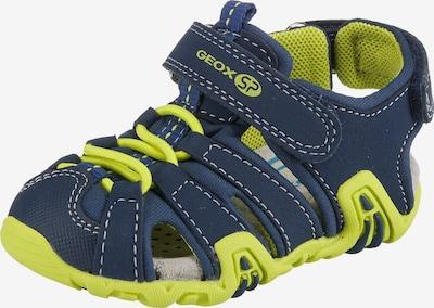 GEOX Sandalen 'KRAZE' in blau, Produktansicht