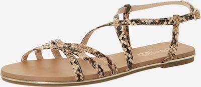 Head Over Heels Sandaal 'LIYA' in de kleur Beige / Bruin, Productweergave