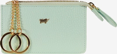 Braun Büffel Schlüsseletui ASTI aus genarbtem Rindleder in hellgrün, Produktansicht