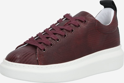 PAVEMENT Sneakers laag 'Dee' in de kleur Bordeaux, Productweergave