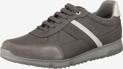 GEOX U Wilmer Sneakers Low in grau / weiß: Frontalansicht