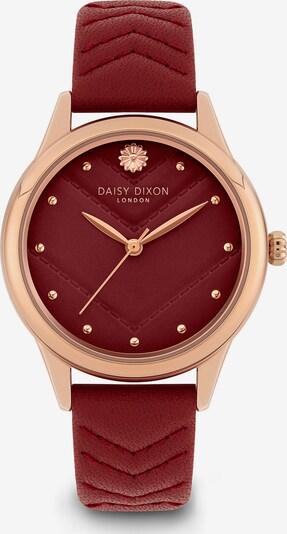 DAISY DIXON Uhr in rosegold / merlot, Produktansicht
